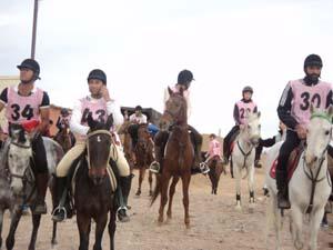 مسابقات استقامت سوارکاری کشوری در رفسنجان/ گزارش تصویری