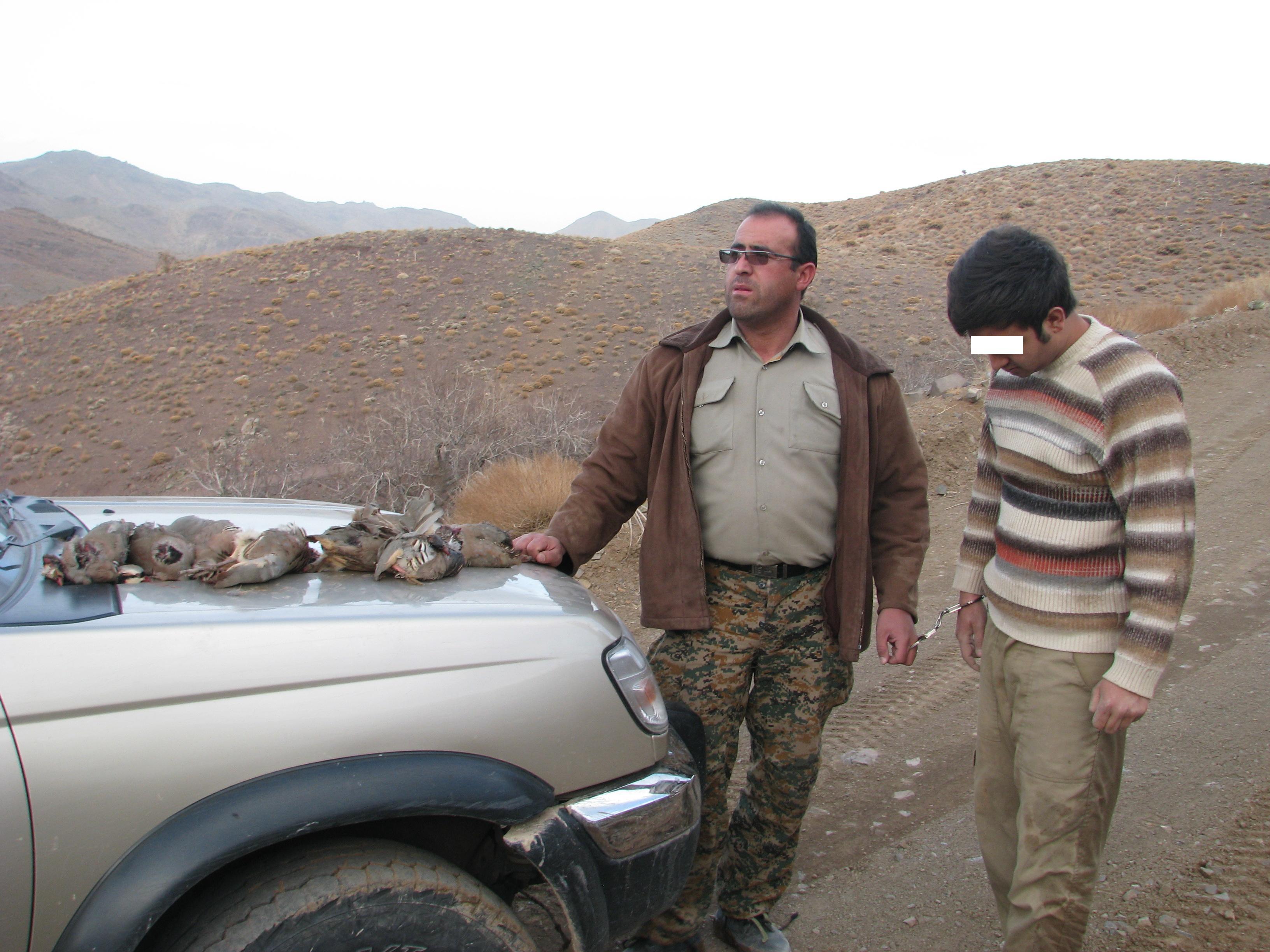 شکارچی کبک در رفسنجان دستگیر شد+ عکس
