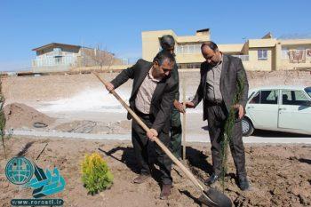 توزیع ۳۵ هزار درخت و درختچه بین مردم رفسنجان/رفسنجان پرگل ترین شهر استان