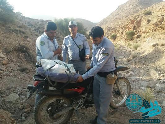 جلوگیری ماموران یگان حفاظت منابع طبیعی رفسنجان از برداشت غیرقانونی انغوزه/تصاویر