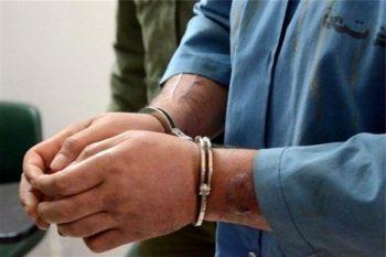 دستگیری ۸ نفر سارق و کشف ۷ فقره سرقت در رفسنجان