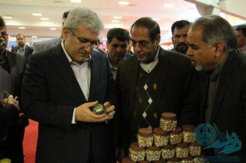 گزارش تصویری حضور ستاری معاون رئیس جمهور در رفسنجان