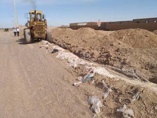 رفع تصرف ۸۸۳۸ متر مربع از اراضی دولتی در رفسنجان+تصاویر