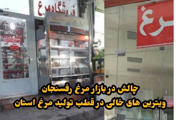 چالش در بازار مرغ رفسنجان/ویترین های خالی در قطب تولید مرغ استان